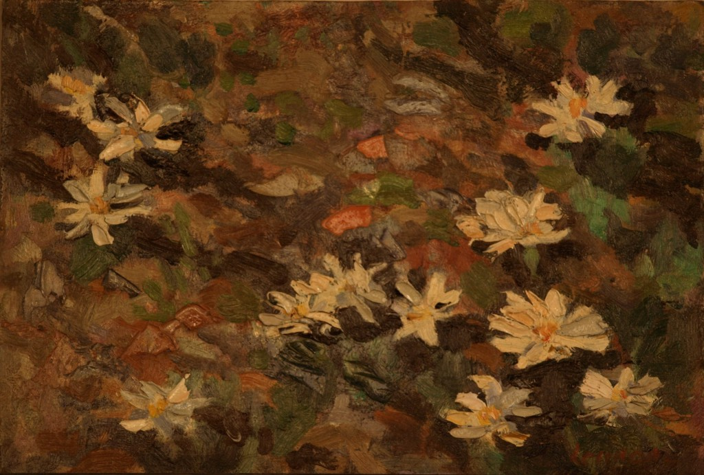 Bloodroot in Sunlight, Oil on Panel, 8.5 x 12 Inches, by Bernard Lennon, $1000